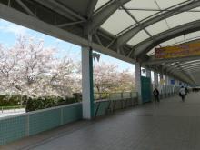 生涯学習!by Crazybowler-阪神競馬場