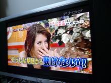 生涯学習!by Crazybowler-ホンマでっかTV 7月19日放送分