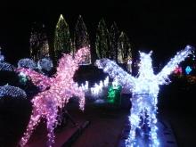 生涯学習!by Crazybowler-光の祭典2010 元渕江公園