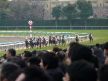 生涯学習!by Crazybowler-中山競馬場 2010/12/19