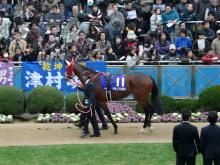 生涯学習!by Crazybowler-中山競馬場 2010/12/19 グランプリボス