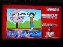 生涯学習!by Crazybowler-ホンマでっか!?TV 2011/4/13