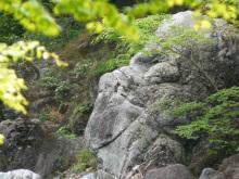生涯学習!by Crazybowler-高津戸峡 大間々 わたらせ渓谷鐡道