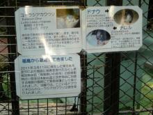 生涯学習!by Crazybowler-上野動物園 福島から避難
