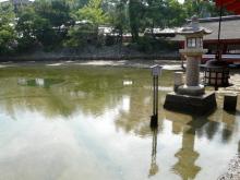 生涯学習!by Crazybowler-厳島神社 鏡の池