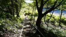 生涯学習!by Crazybowler-赤城山 地蔵岳 見晴山コース