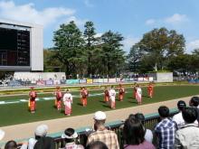 生涯学習!by Crazybowler-盛岡さんさ踊り 東京競馬場