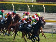 生涯学習!by Crazybowler-東京競馬場 2011/11/27