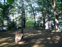 生涯学習!by Crazybowler-すり鉢山 上野恩賜公園