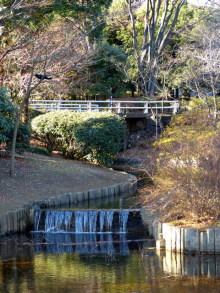生涯学習!by Crazybowler-北の丸公園 池