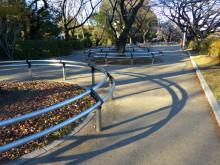 $生涯学習!by Crazybowler-千鳥ヶ淵公園