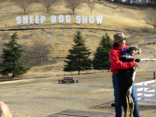 $生涯学習!by Crazybowler-グリーン牧場 SheepDogShow