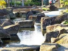 生涯学習!by Crazybowler-見沼代親水公園2012/3/27