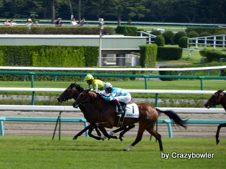 生涯学習!by Crazybowler-中山競馬場2012/9/30