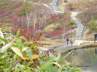 生涯学習!by Crazybowler-草津白根山 弓池