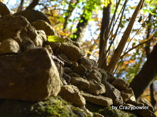 生涯学習!by Crazybowler-妙義山・金洞山の山道