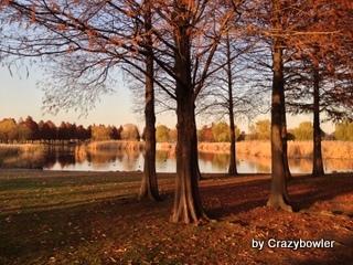 生涯学習!by Crazybowler-舎人公園2012/12初旬 足立区北西部
