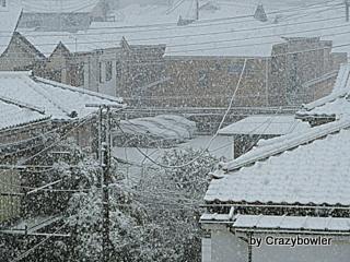 $生涯学習!by Crazybowler-2013/1/14 東京雪