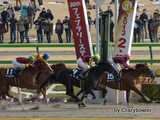 生涯学習!by Crazybowler-ゴール前 東京競馬場2013/2/17・9R