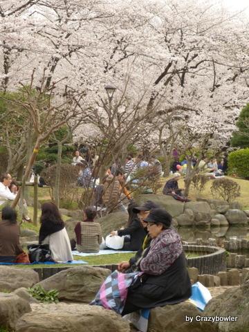 生涯学習!by Crazybowler-隅田公園 2013/3/23