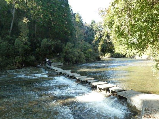 川を渡る遊歩道