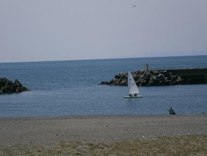 P3262011.jpg