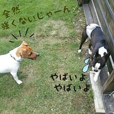 fc2_2013-07-28_20-46-30-994.jpg