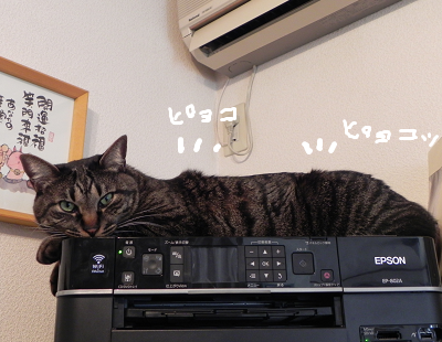 2014010702.png