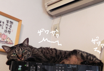 2014010703.png