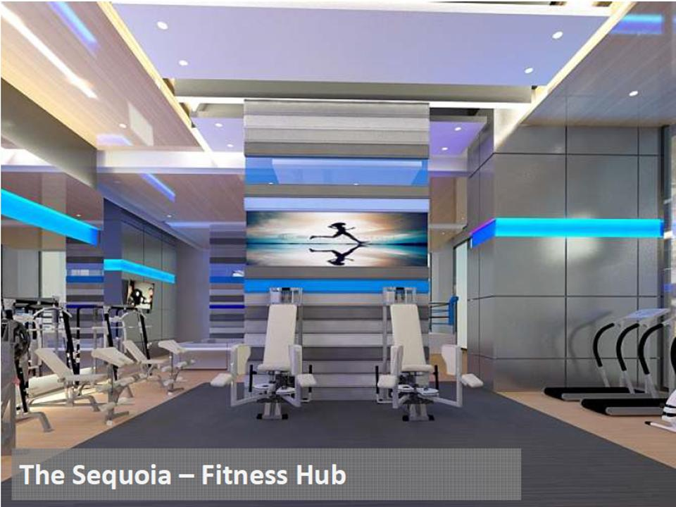 Sequoia Gym
