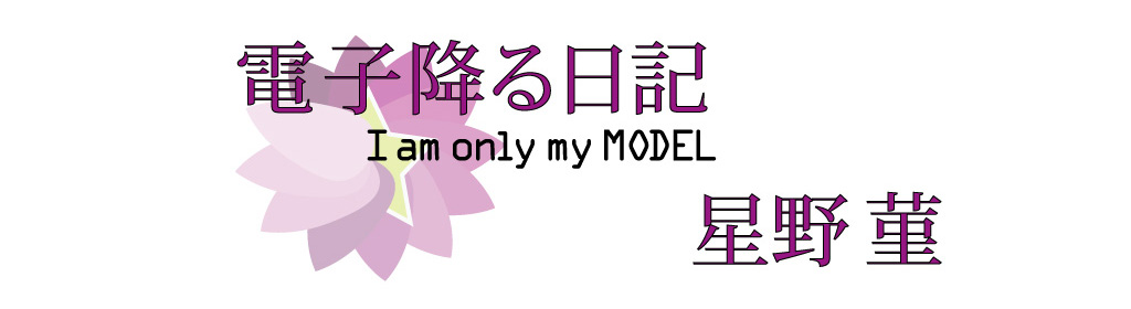 電子降る日記 I AM ONLY MY MODEL 星野 菫