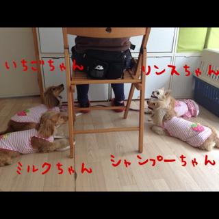 1_20130529153736.jpg