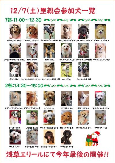 127参加犬