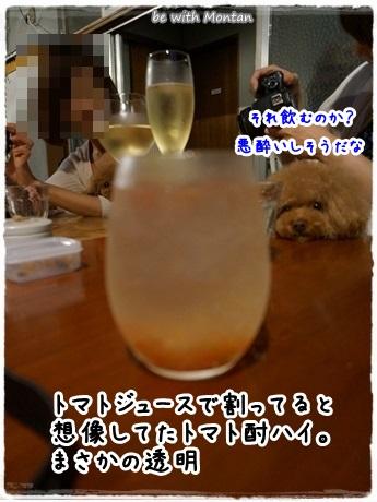 DSC04141-20130909.jpg
