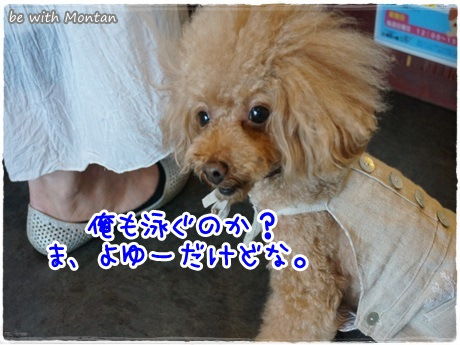 DSC05105-20131005.jpg