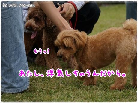 DSC06274-20131023.jpg