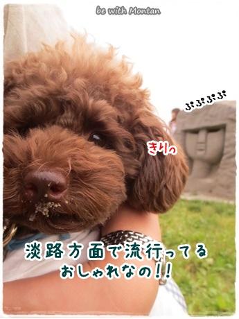 IMG_0144-20131023.jpg