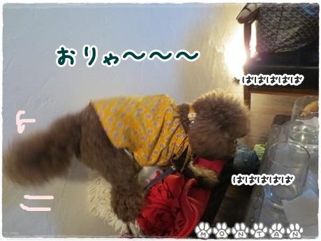 IMG_1564-20130709.jpg