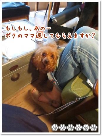 IMG_1577-20130709.jpg