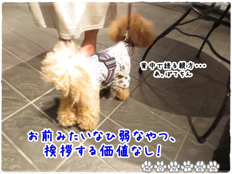 IMG_1673-20130715.jpg