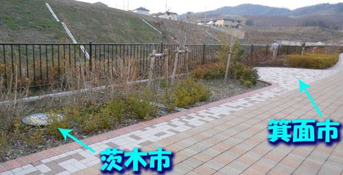 DSCN6894_2014010420535134a.jpg