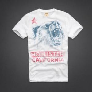 Hollister Co.(ホリスター) Surfers Knoll T-Shirt