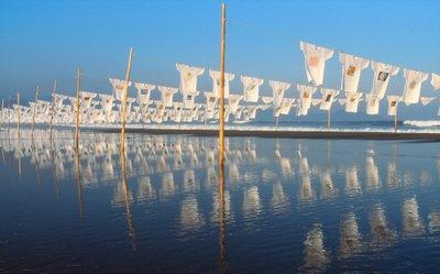 エコツーカフェ「高知県 砂浜美術館」20130718