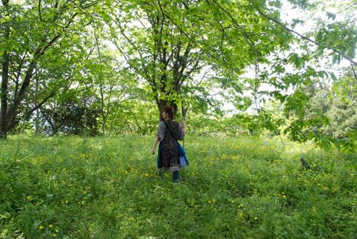 108-201205daisen.jpg