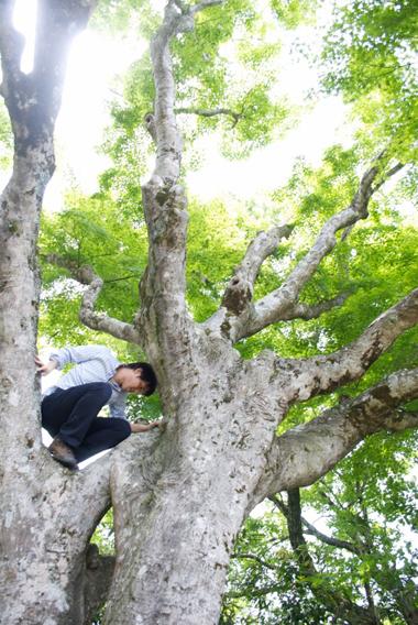 112-201205daisen.jpg