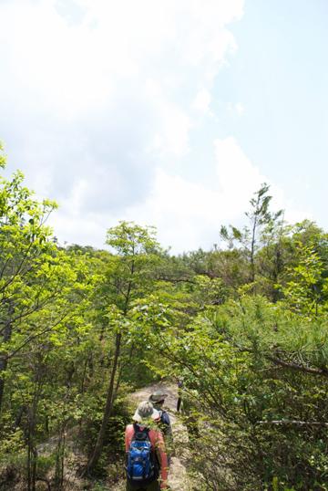 鶏冠山12186_large