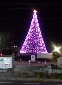 植田駅近くの公園ツリー
