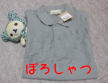 ぽろしゃつ (1)