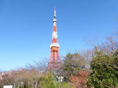 東京タワー 2013 12.15