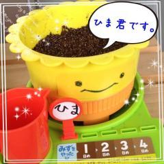image_20130609135019.jpg